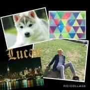 lucasm
